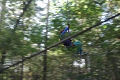 2014-10-kletterpark_33