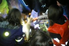 nachtwanderung_2011_21