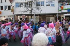 2015-rosenmontag_52