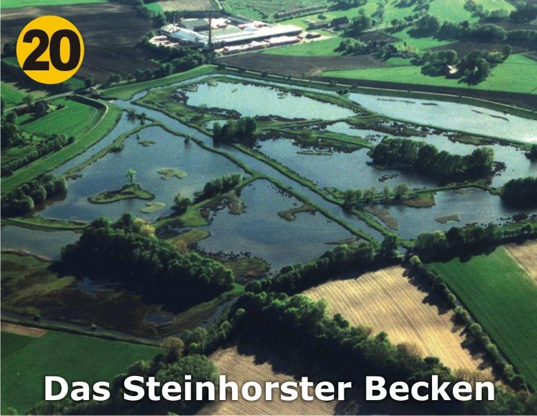 20_Das-Steinhorster-Becken