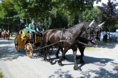 2012_schuetzenfest_sonntag_13