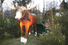 2014-steinhorster-weihnacht_1